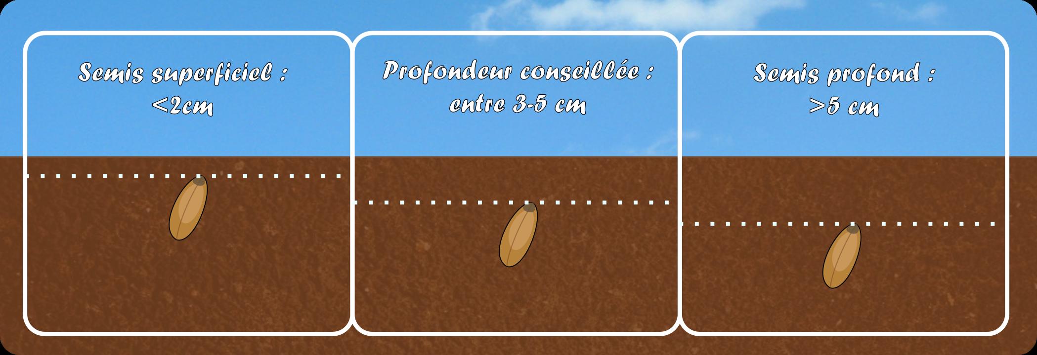 https://normandie.chambres-agriculture.fr/conseils-et-services/produire-thematiques/cultures/cereales/semis-des-cereales/semis-profond-contre-les-etourneaux/