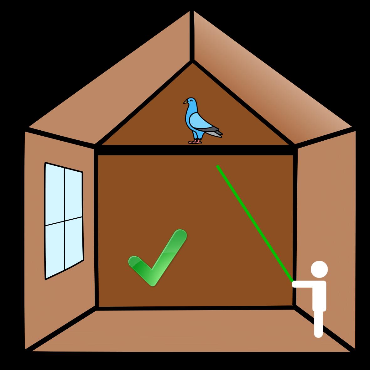 Protection batiment elevage etourneaux